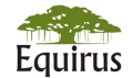 Equirus Capital Private Limited Logo