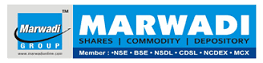 Marwadi Shares and Finance Limited Logo