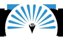 Vishal Fabrics Ltd Logo