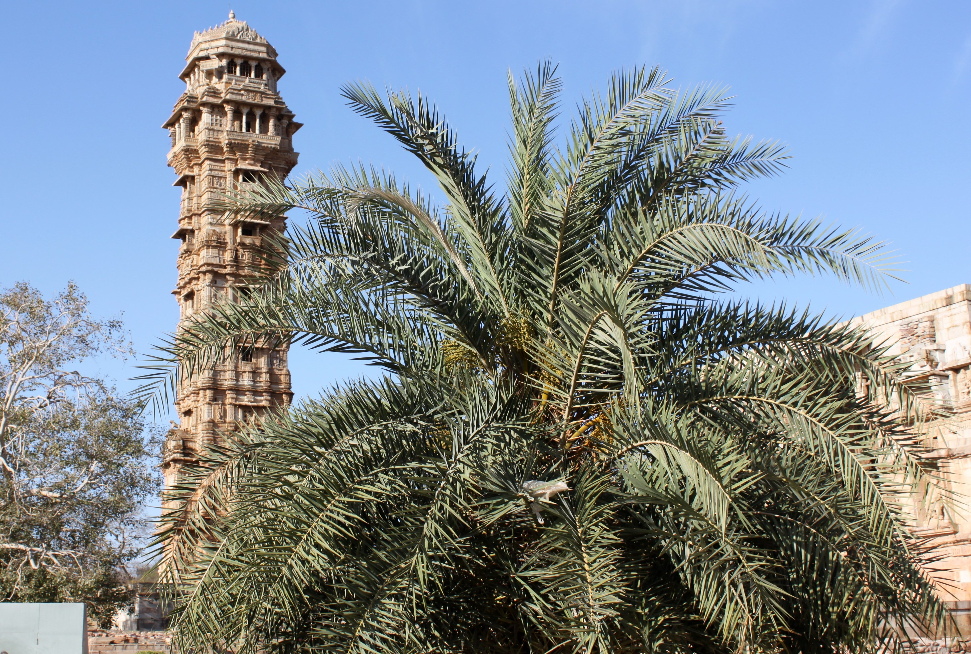 Vijay Stambha (Tower of Victory) 13