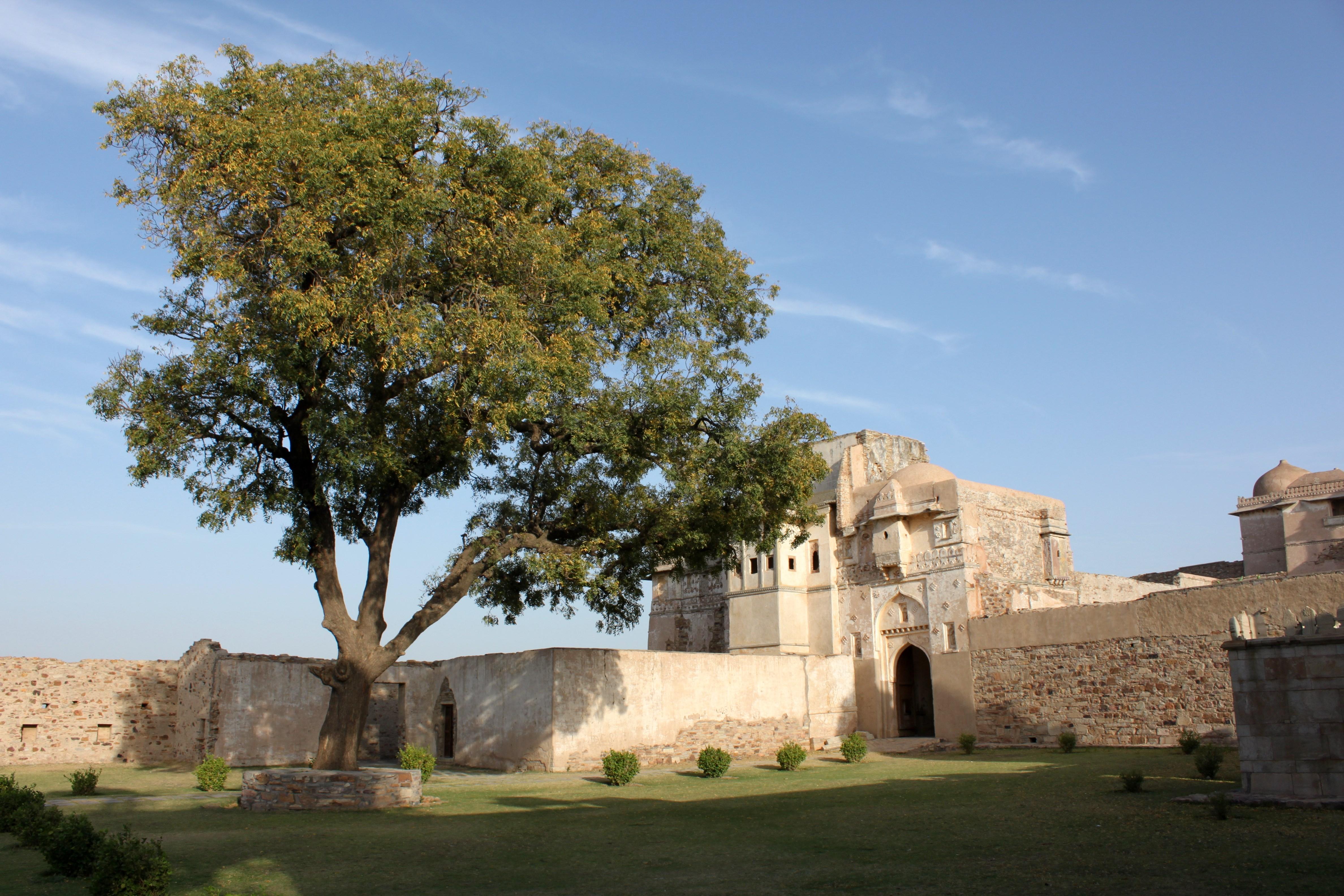 Ratan Singh Palace 5