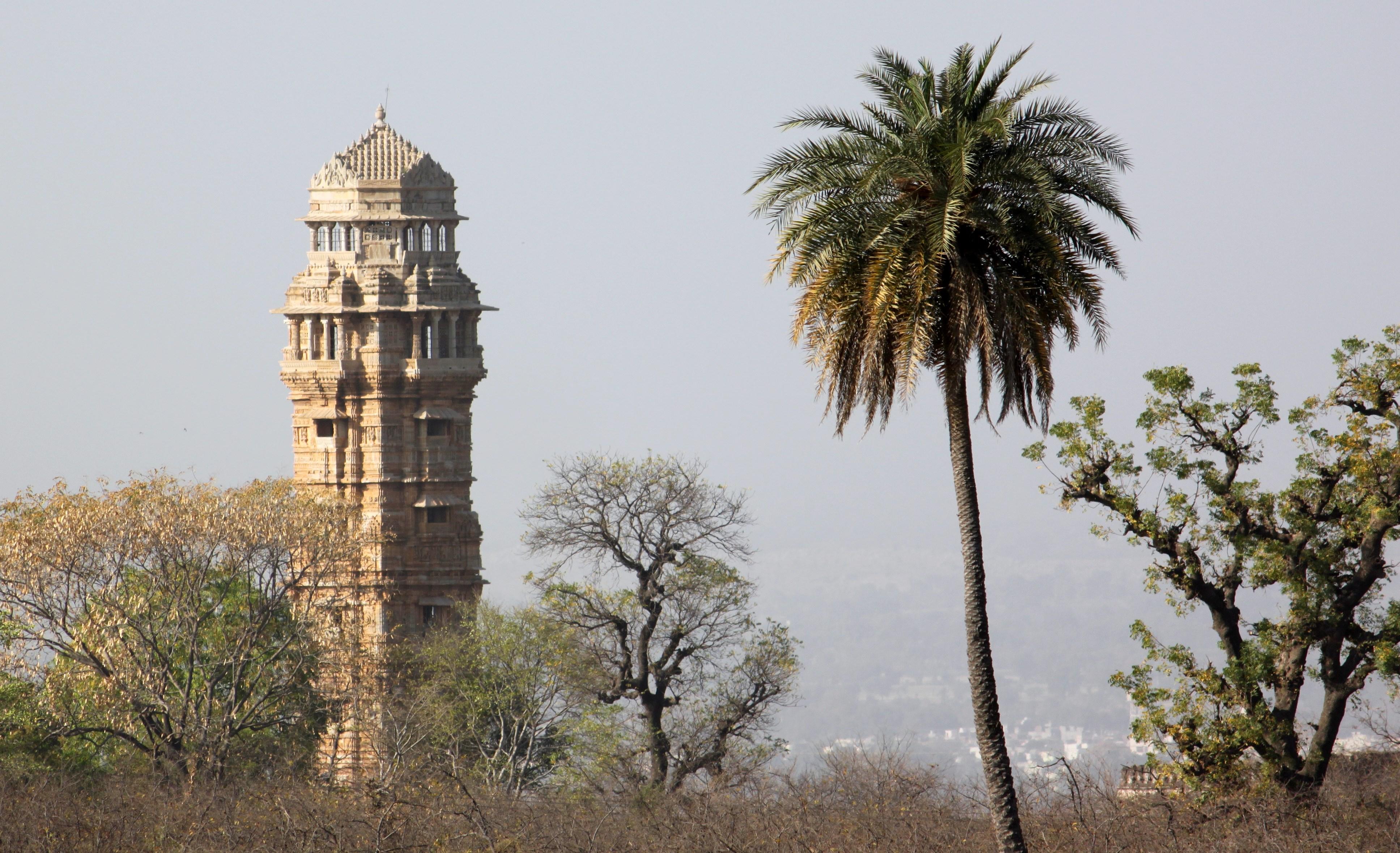 Vijay Stambha (Tower of Victory) 14
